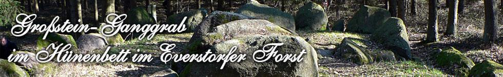Großstein Ganggrab mit Hünenbett aus der Jungsteinzeit, im Everstorfer Forst, gehörig zur Südgruppe der dortigen zahlreichen Megalithanlagen
